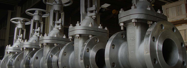 Sealing Solutions Kimberley: PRODUCTS - Valves